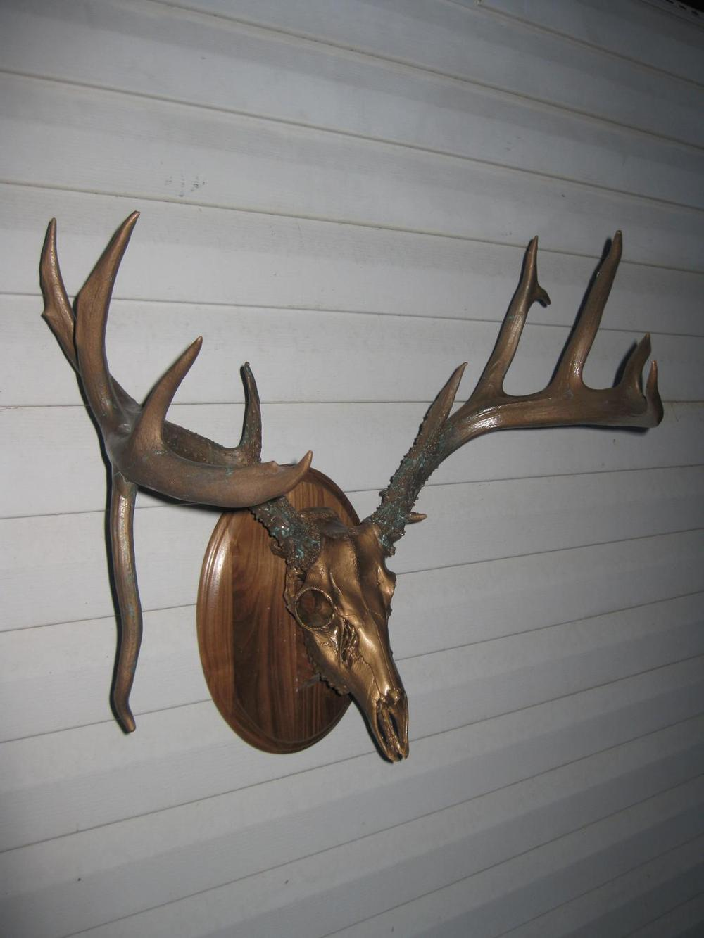 8 and DroppingMetalized bronze droptine whitetail antlers with mint green patina and bronze/brass metalized skull - The Antler Shack copper,bronze, brass, and silver metalized creations limited addition bronze