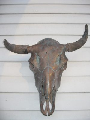 Bronze Buffalo Skull - The Antler Shack copper,bronze, brass, and silver metalized creations limited addition bronze