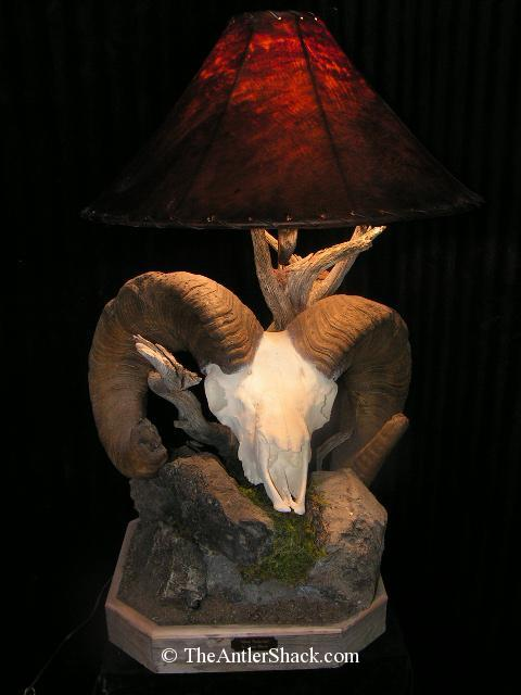 "Custom Lamp With 180"" Bighorn Any of my reproductions can be used in this style of lamp. - The Antler Shack Bighorn Sheep Lamps Wild Sheep reproductions"