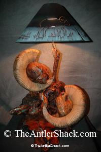 Custom Lamp - The Antler Shack Bighorn Sheep Lamps Wild Sheep reproductions