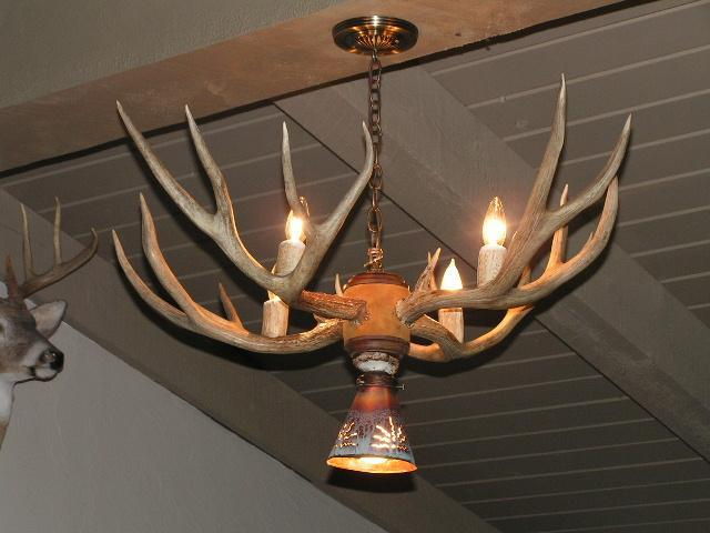 5 Light - Mule Deer Chandelier accented with leather and walnut - The Antler Shack Antler Chandeliers Antler Lamps
